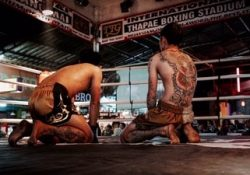 thai fighting